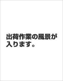 kari_1.jpg